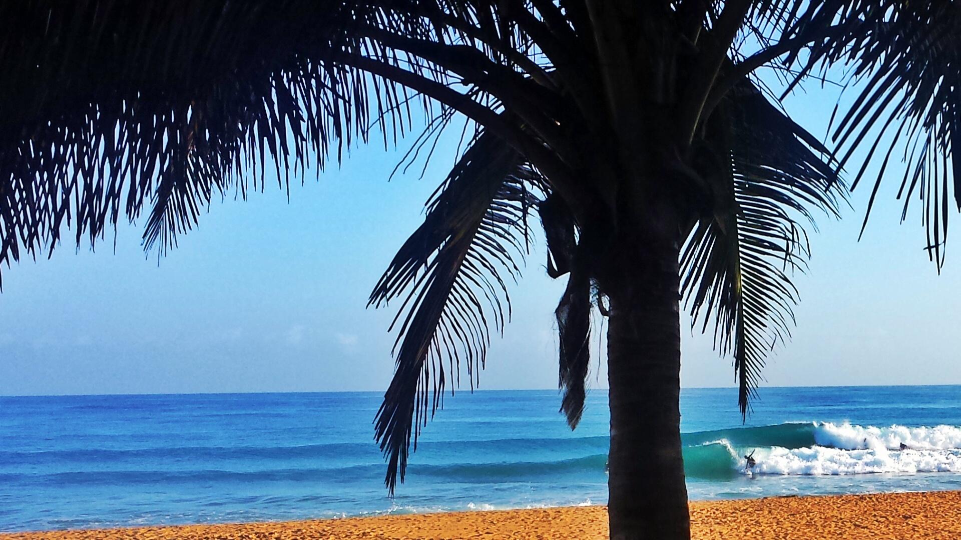 Surfing Lessons San Juan Puerto Rico Spectrum Surf School